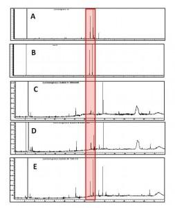 ChromaGraph