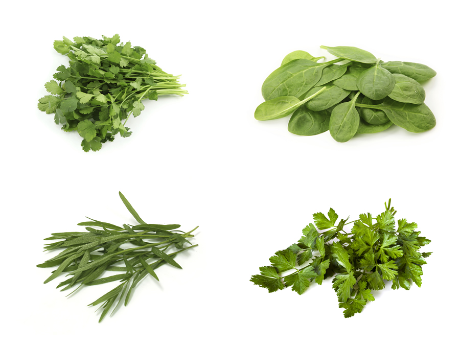 Spinach, Tarragon, Parsley & Coriander
